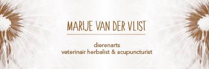 Marije van der Vlist Logo